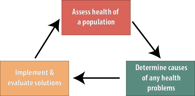 "Figure 1 which shows 3 boxes connected cyclically. The top box says ""assess health of a population,"" which points to a box saying ""Determine causes of any health problems,"" which points to a box that says ""Implement and evaluate solutions,"" which points back to the first box."