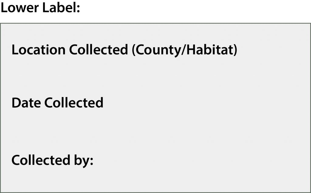 Image of Lower Label containing the location collected (county/habitat), date collected and collected by: