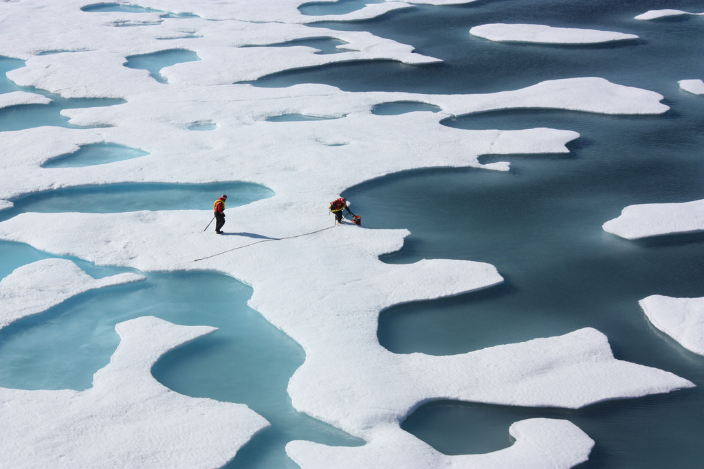 Melting sea ice during summer in the Artic.