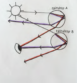 Student ray diagram for two raindrops and person seeing a rainbow.