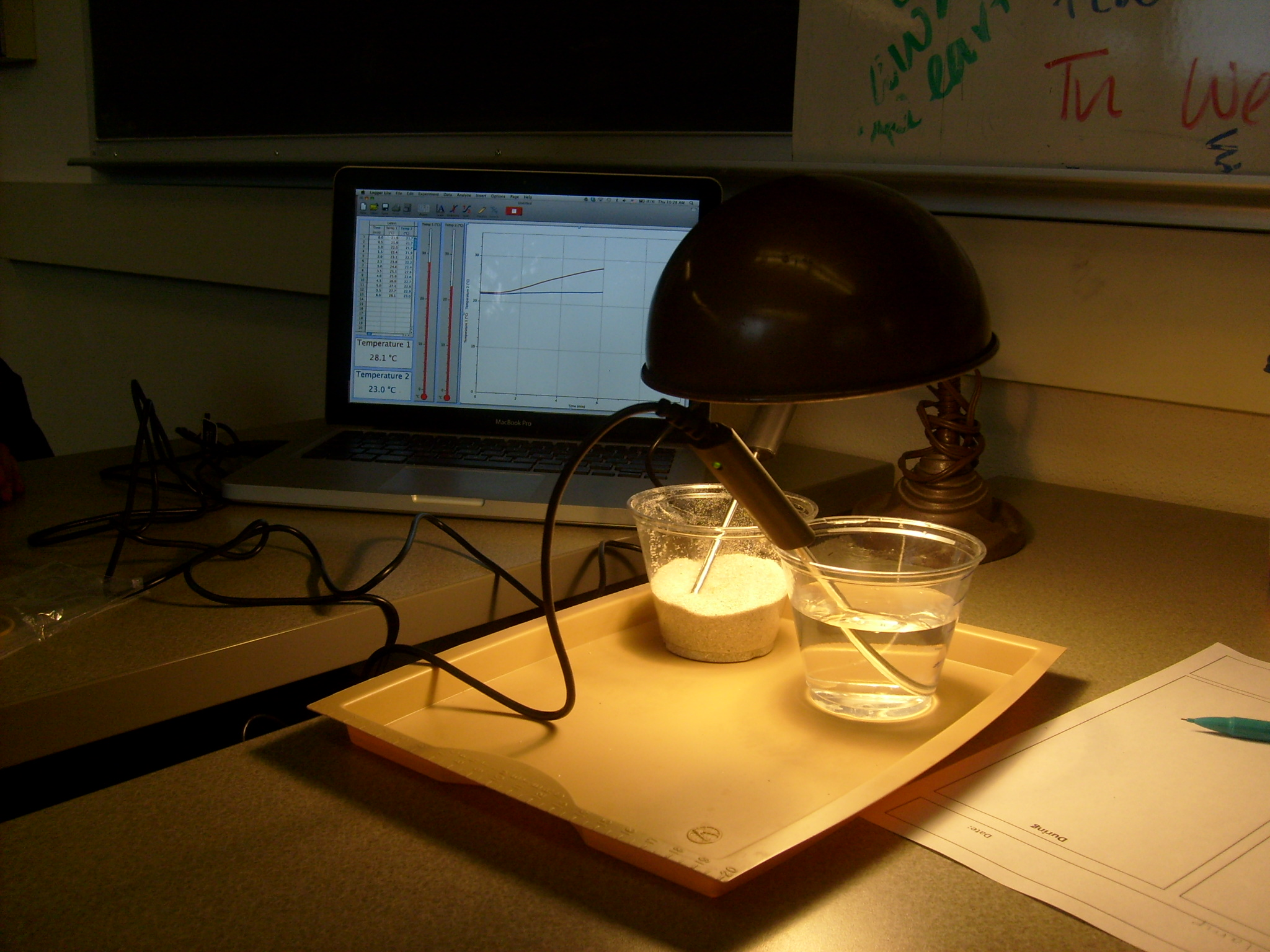 Set up for comparing the way that energy from a lamp warms up sand and water.