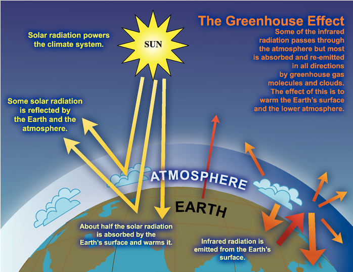 IPCC Diagram representing the greenhouse effect for the entire Earth