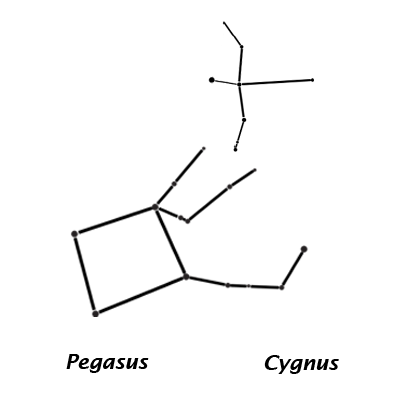 The constellations Pegasus, the flying horse, and Cygnus, the swan, associated with Greek and Roman mythology.