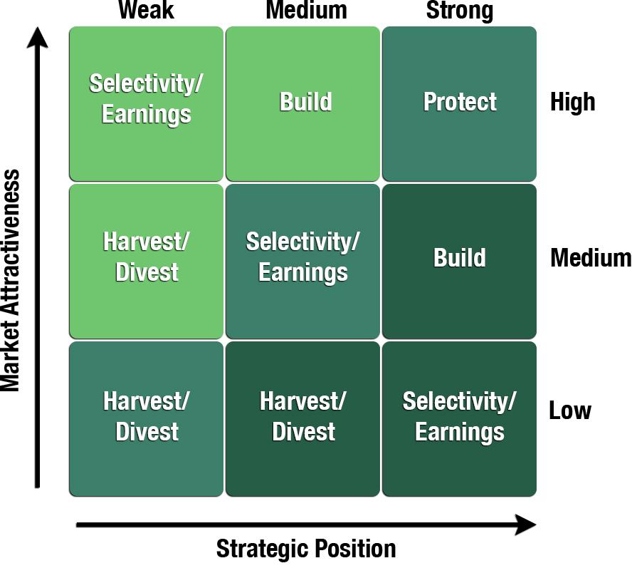 GE Portfolio Planning Matrix