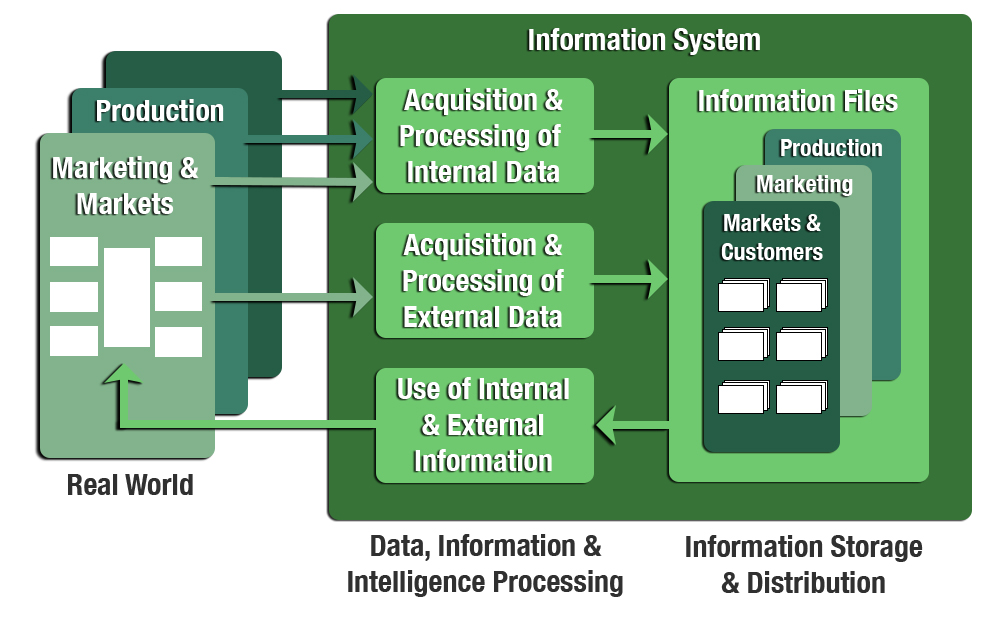 The Idea of Information Systems