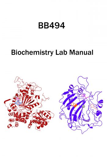 Cover image for Chemical Biology & Biochemistry Laboratory Using Genetic Code Expansion Manual