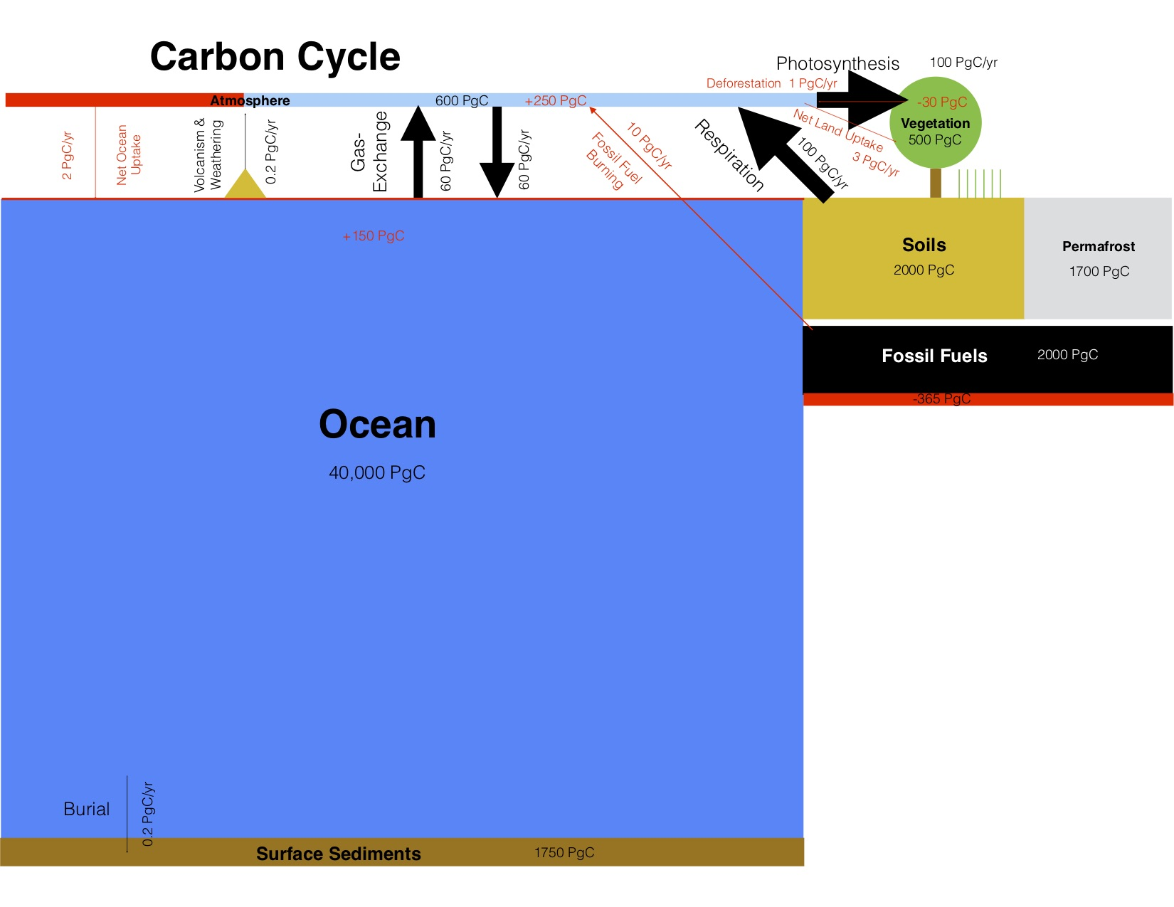 his figure of the global carbon cycle uses the same numbers as Fig. 1 but shows box sizes proportional to the size of the respective carbon reservoir. Red colors indicate human perturbations. Arrows are also proportional to the size of the fluxes, except for the small fluxes of sediment burial, volcanism and weathering, net ocean and land uptake and deforestation because those arrows would be hardly visible if drawn to scale. Based on Fig. 6.1 in IPCC (2013).