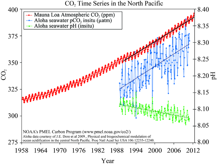 Measurements of seawater pCO2 (blue) and pH (green) at ocean station Aloha near Hawaii together with the Mauna Loa record of atmospheric CO2 (red). From pmel.noaa.gov.