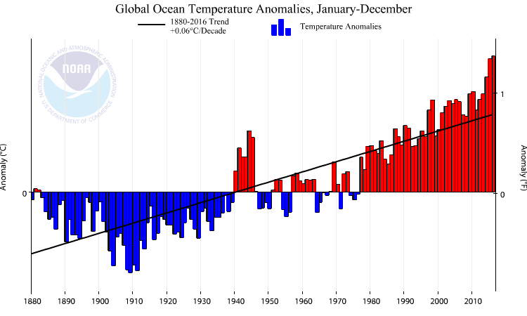 Averaged over the global ocean the year-to-year variations are still smaller (~0.5°C) than over land and the trend is also smaller (0.06°C/decade).