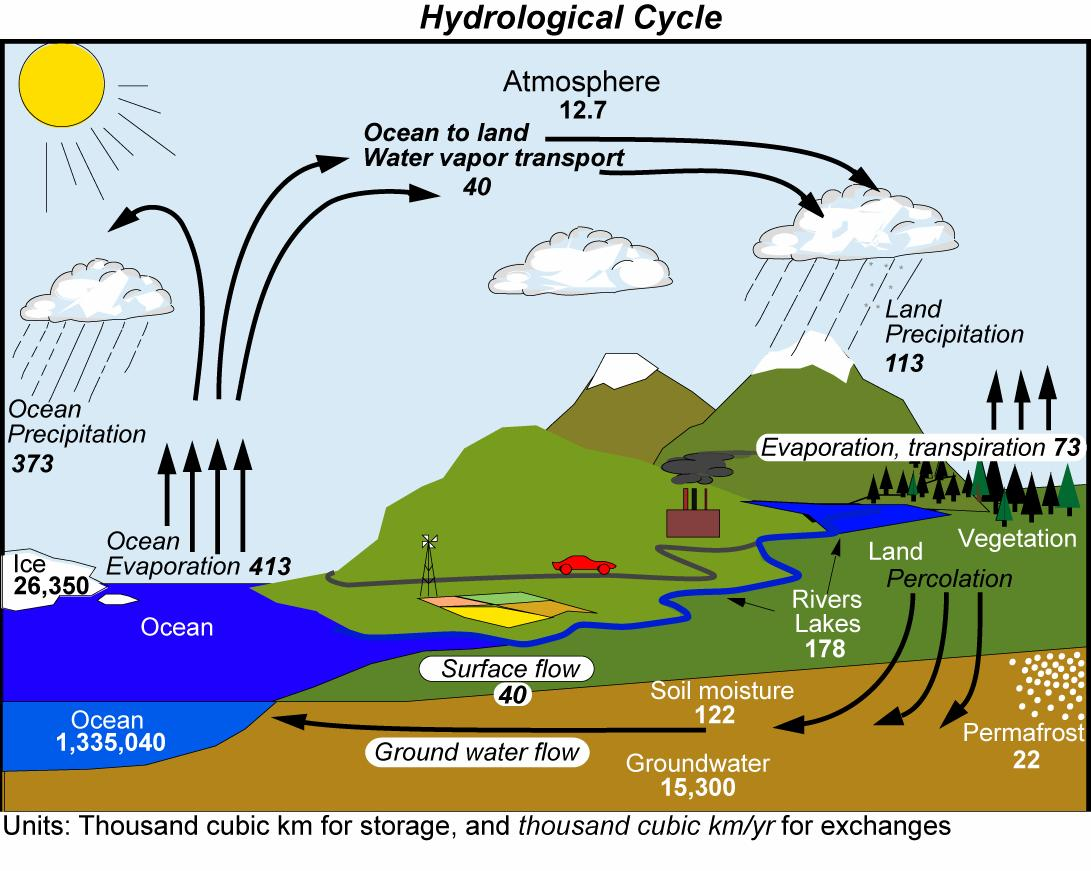 The Global Water Cycle. Fluxes are indicated in slanted font. From Trenberth et al. (2007). Image from ucar.edu.