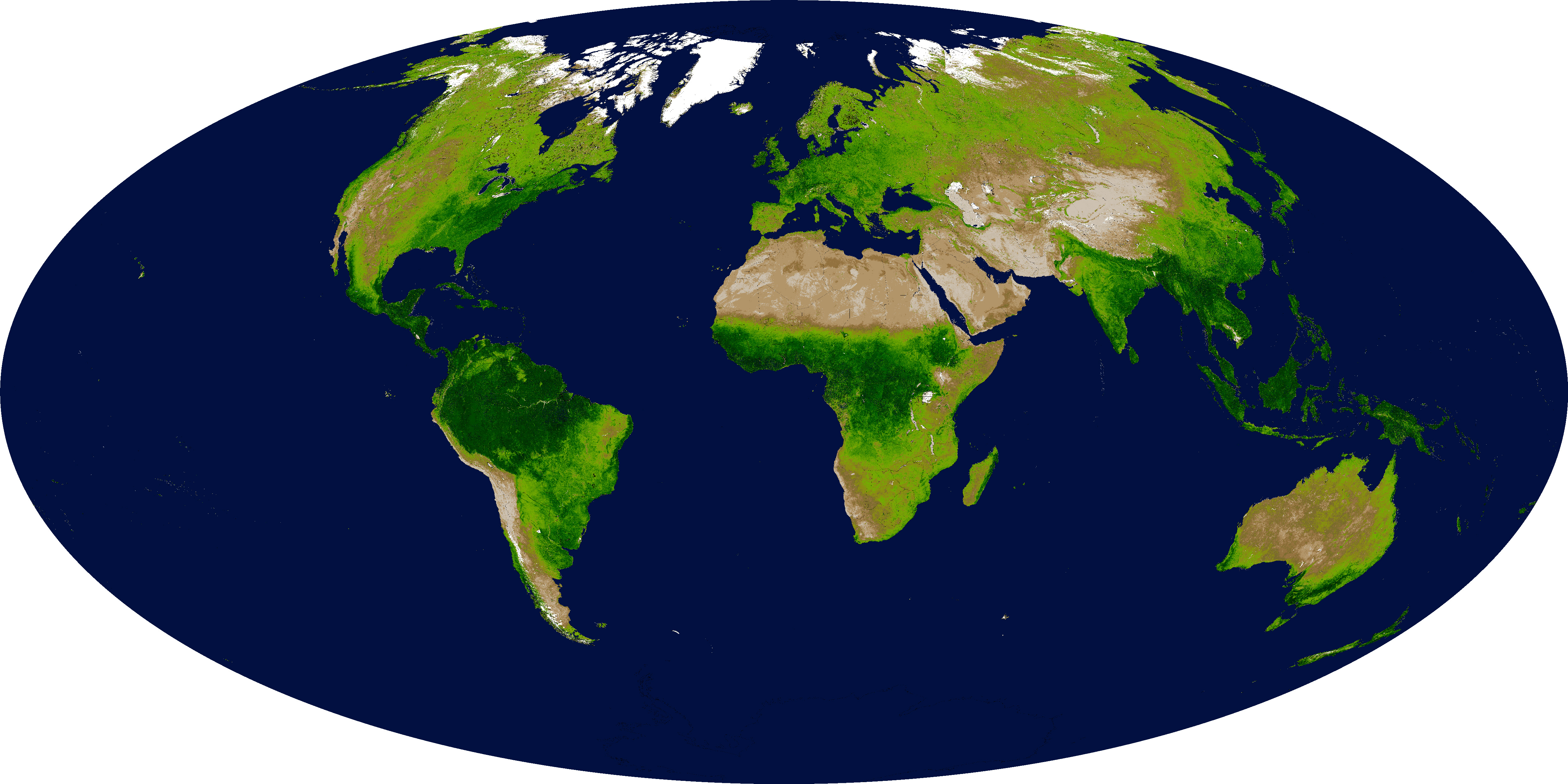 Global Vegetation Distribution From Satellites. Shown is the Enhanced Vegetation Index (EVI), which represents the concentration of green leaf vegetation. From nasa.gov.