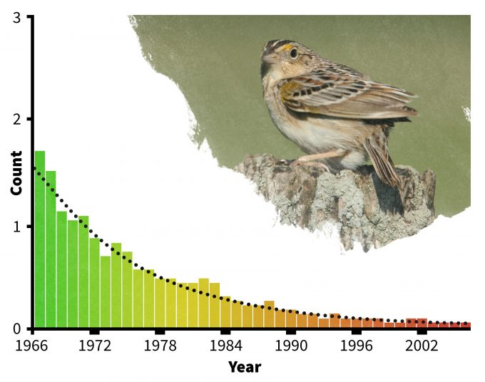 Figure 1.2. Monitoring data (redrafted from Sauer et al. 2007) provides evidence that at least one species of grassland bird is declining markedly in New York State. Photo by Dominic Sherony and published under creative commons.