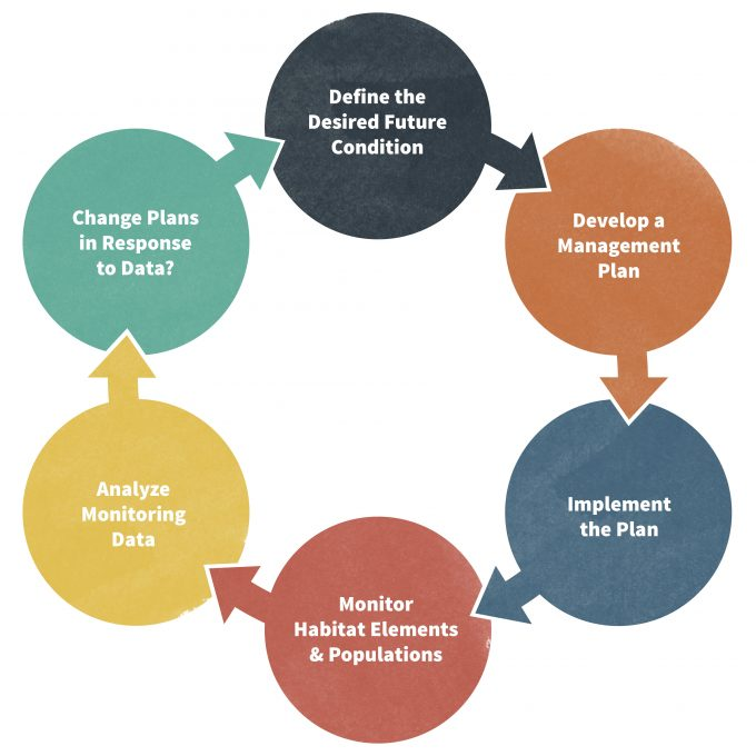 Figure 1.4. The adaptive management cycle is designed to improve information used to make better management decisions.