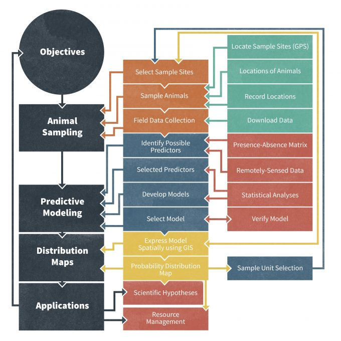 Figure 10.1. A flowchart of an integrated framework for using GPS and PDA technology (boxes with grey background) for collecting monitoring information. By collecting monitoring data in a real-time, digital format these data can be used for more sophisticated purposes such as species distribution mapping that we describe. Tasks highlighted in bold indicate the places in which advanced methods can provide increased accuracy, and boxes with grey background indicate the places in which digital methods provide a reduction in costs (time or money). Figure redrafted from Traviani (2007).