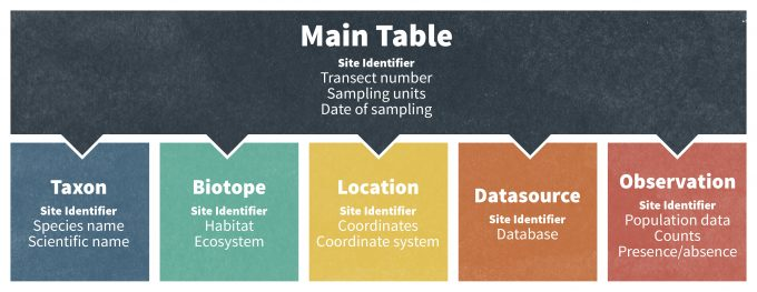 Figure 10.2. A relational database management system combines data from several different databases. These databases are typically linked by a standard unique identifier, in this case a site identity number, which allows a user to extract data from multiple data sets.