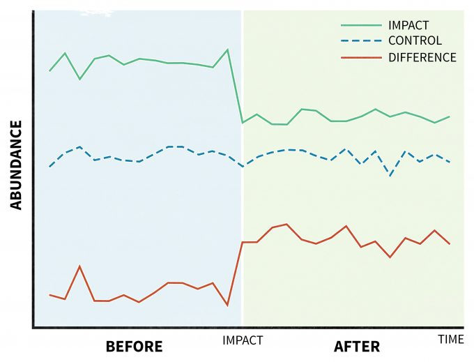 Figure 11.5. A hypothetical example of a BACI analysis where abundance samples are taken at control impact sites before and after the impact and compared to a control site (redrafted from Stewart-Oaten et al. 1986).