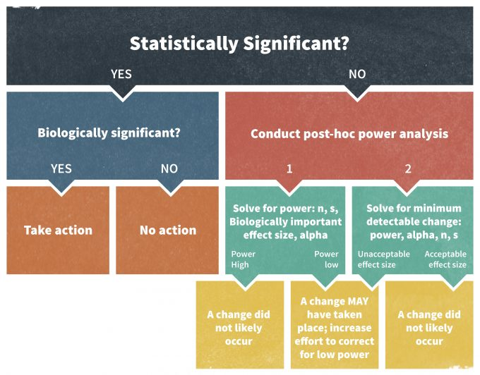 Figure 11.6. A decision process to evaluate the significance of a statistical test (redrafted from Elzinga et al. 2001).