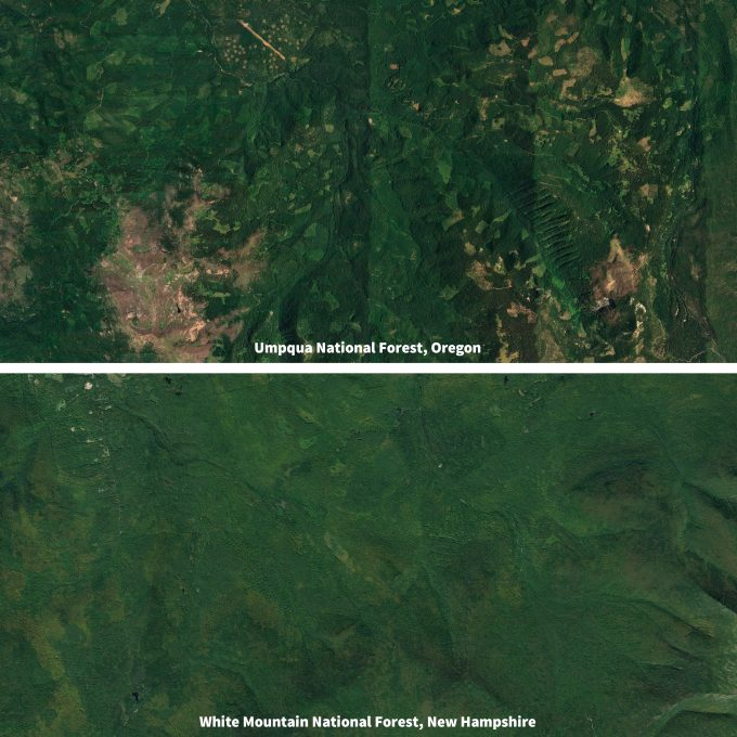 Figure 12.2. Air photos of the Umpqua National Forest, Oregon (top) and the White Mountain National Forest, New Hampshire (bottom) illustrating the level anthropogenic disturbance in each area. Although the lower image seems to show less impact, regenerating patch cuts are scattered throughout the scene. If two similar monitoring programs were implemented in these two locales, the context, both in terms of geographic location and anthropogenic disturbance, would likely result in two significantly different programs on the ground. Figures captured from Google Earth.
