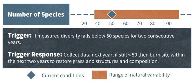 Figure 12.7. A monitoring 'scorecard' in which the current species diversity in a hypothetical grassland is assessed against a 'desired' range for that parameter Redrafted from McDonnell and Williams (2000) as modified from Hobbs and Norton (1996).
