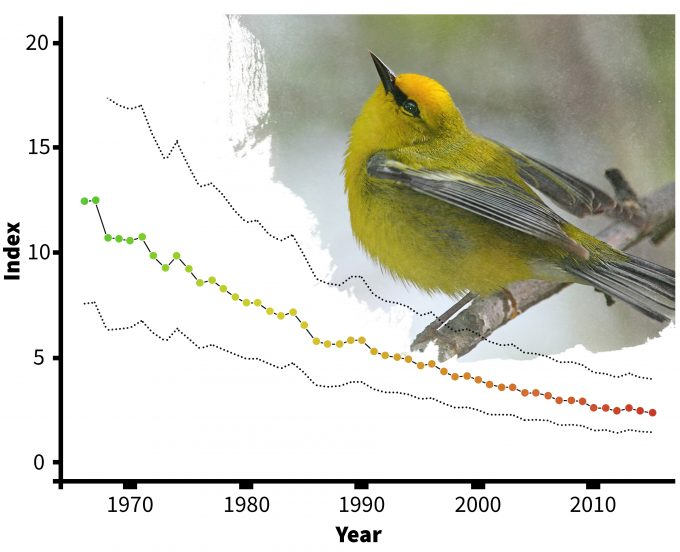 Figure 4.4 Estimated declines of Blue-winged warblers in Connecticut (from Sauer et al. 2006). Photo by gfdl-1.2 and published under creative commons.