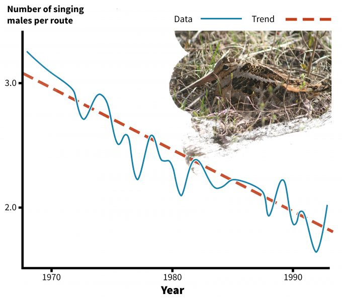 Figure 5.9. Long term trends of numbers of American woodcock observed on singing grounds in the eastern US, 1968-1995 (redrafted from Bruggink and Kendall 1995). Photo by guizmo_68 and published under creative commons.