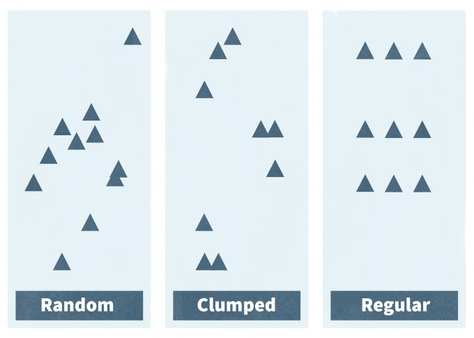 Figure 6.3. The three basic spatial patterns found in populations are random, clumped, and regular.