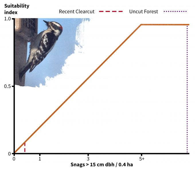 Figure 9.7. Habitat suitability relationship for downy woodpeckers for one of two suitability indices: snag density. Redrafted from Schroeder (1982).