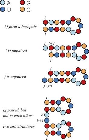 The recursion relation in the Nussinov algorithm