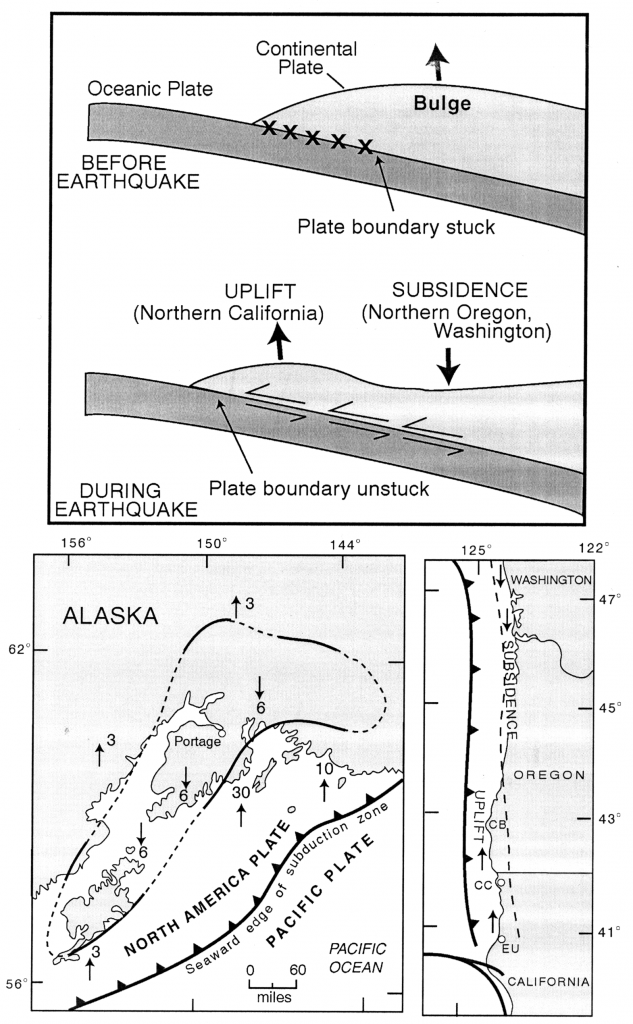 Dating earthquakes in coastal estuaries, from Gordon Jacoby, Columbia University