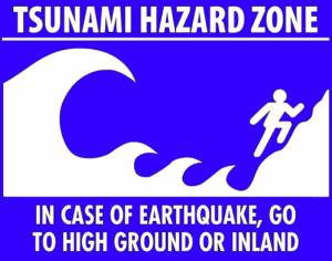 Internationally recognized tsunami warning logo.