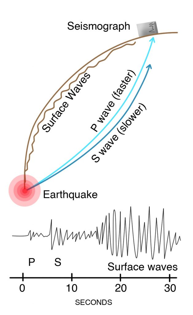 An earthquake produces P waves, or compressional waves, that travel faster and reach the seismograph first, and S waves, or shear waves, that are slower