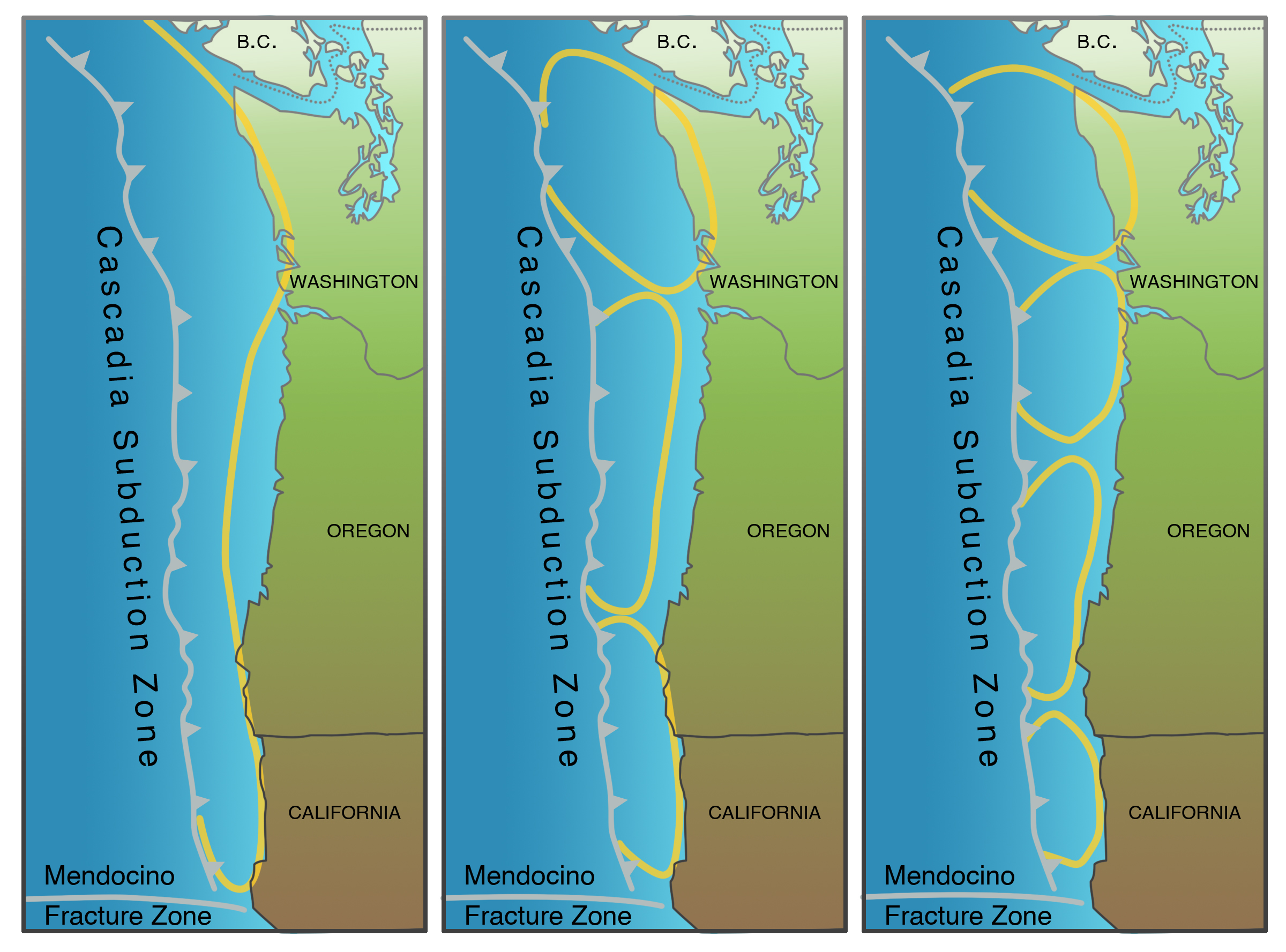 The deterministic choices for the maximum considered earthquake on the Cascadia Subduction Zone.
