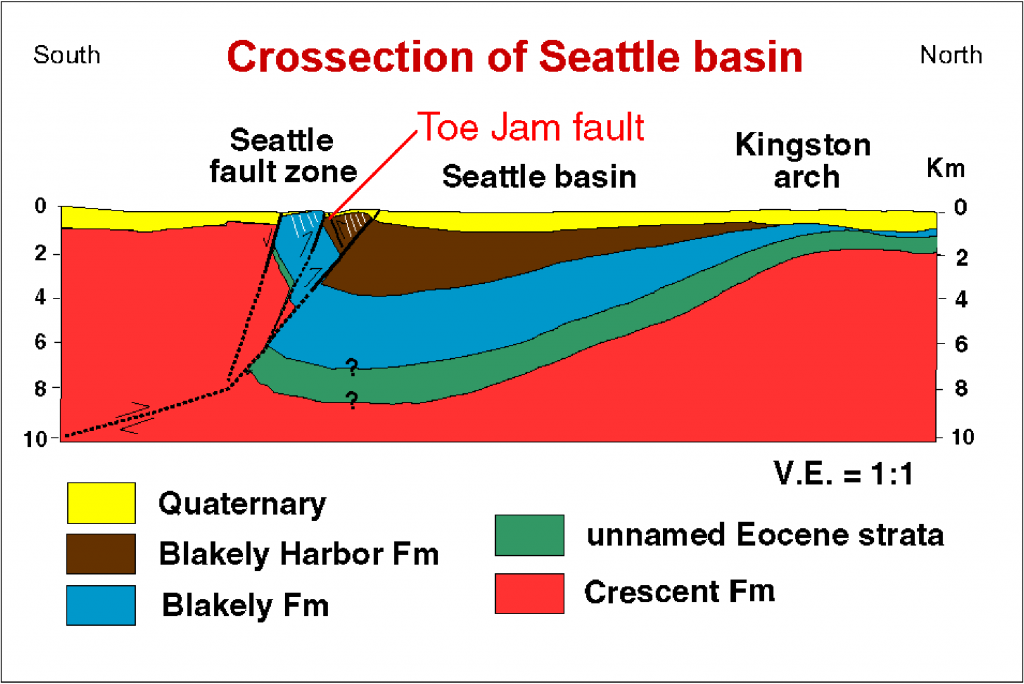 Cross section of Seattle fault, showing that the north side is downdropped as part of the Seattle basin, and the south side is uplifted, with bedrock close to the surface.