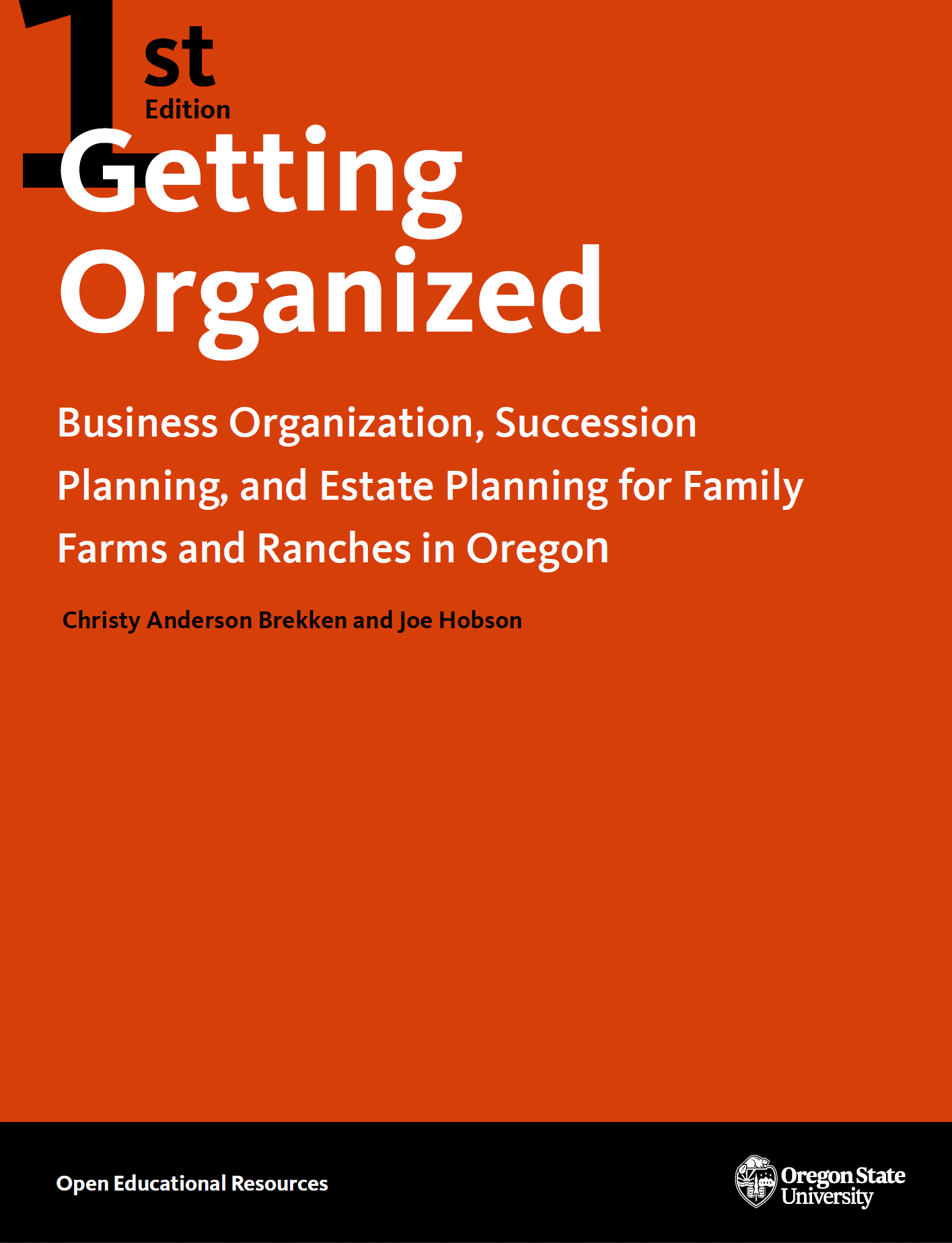 Cover image for Getting Organized
