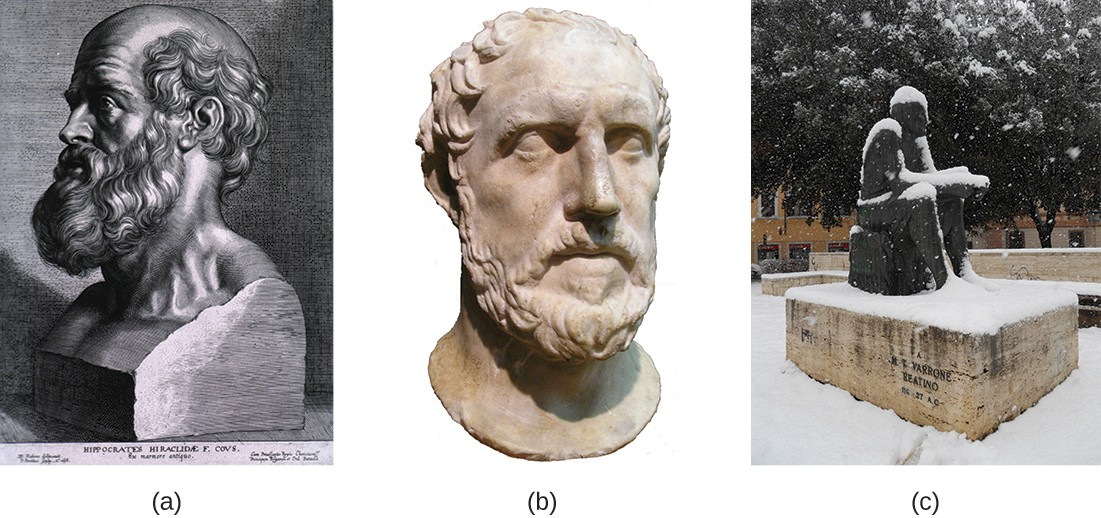 "(a) Hippocrates, the ""father of Western medicine,"" believed that diseases had natural, not supernatural, causes. (b) The historian Thucydides observed that survivors of the Athenian plague were subsequently immune to the infection. (c) Marcus Terentius Varro proposed that disease could be caused by ""certain minute creatures . . . which cannot be seen by the eye."""