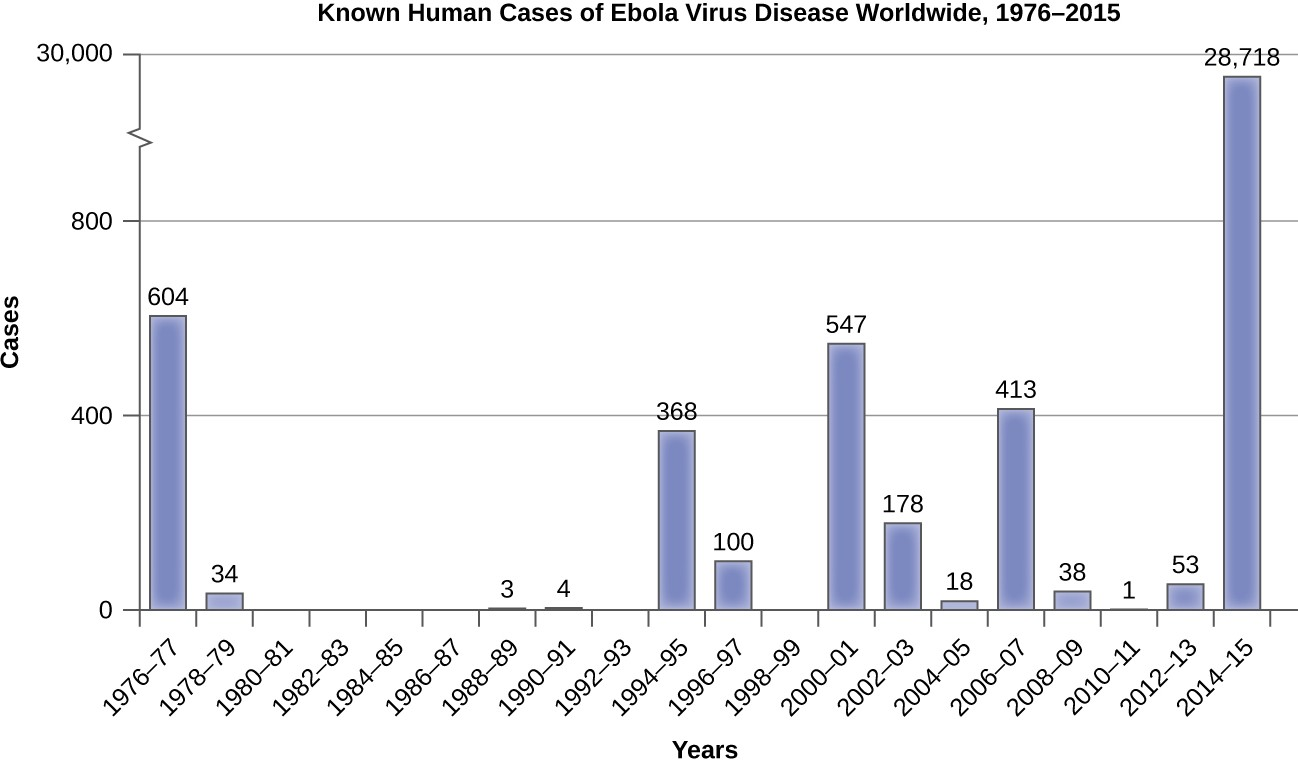 Even before the Ebola epidemic of 2014–15, Ebola was considered an emerging disease because of several smaller outbreaks between the mid-1990s and 2000s.