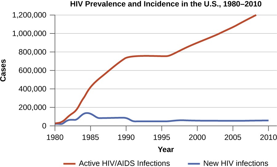 This graph compares the incidence of HIV (the number of new cases reported each year) with the prevalence (the total number of cases each year). Prevalence and incidence can also be expressed as a rate or proportion for a given population.