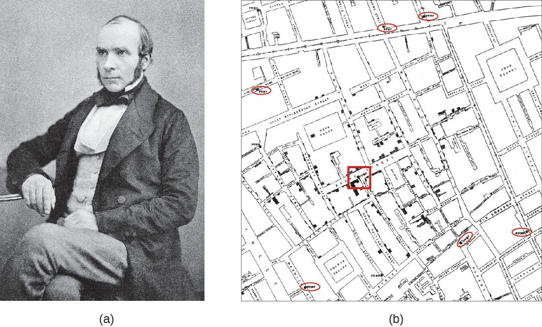 (a) John Snow (1813–1858), British physician and father of epidemiology. (b) Snow's detailed mapping of cholera incidence led to the discovery of the contaminated water pump on Broad street (red square) responsible for the 1854 cholera epidemic.