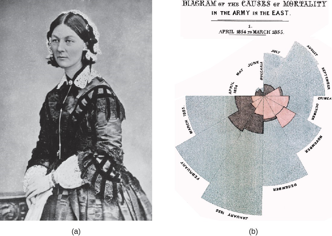 (a) Florence Nightingale reported on the data she collected as a nurse in the Crimean War. (b) Nightingale's diagram shows the number of fatalities in soldiers by month of the conflict from various causes. The total number dead in a particular month is equal to the area of the wedge for that month. The colored sections of the wedge represent different causes of death: wounds (pink), preventable infectious diseases (gray), and all other causes (brown).