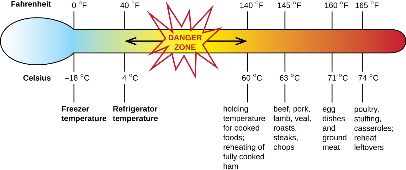 This figure indicates safe internal temperatures associated with the refrigeration, cooking, and reheating of different foods. Temperatures above refrigeration and below the minimum cooking temperature may allow for microbial growth, increasing the likelihood of foodborne disease.