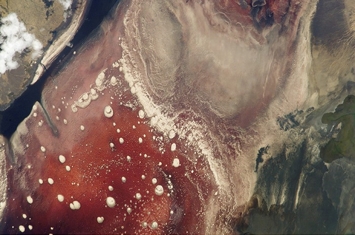 View from space of Lake Natron in Tanzania. The pink color is due to the pigmentation of the extreme alkaliphilic and halophilic microbes that colonize the lake.