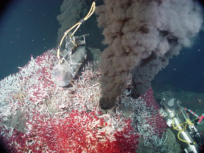 A black smoker at the bottom of the ocean belches hot, chemical-rich water, and heats the surrounding waters. Sea vents provide an extreme environment that is nonetheless teeming with macroscopic life (the red tubeworms) supported by an abundant microbial ecosystem.
